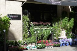 Adriane M. Flower Shop Paris