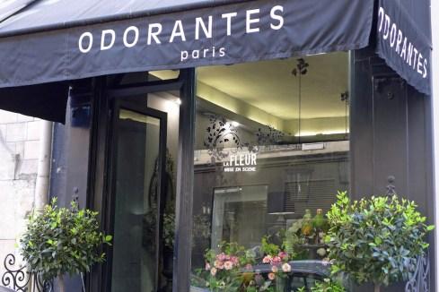 Odorantes Paris - flowers and parrots