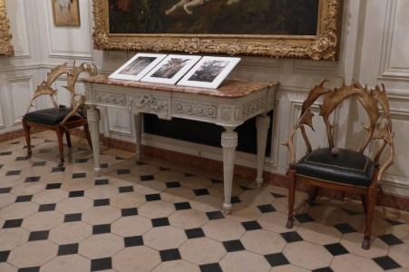 Musee de la chasse et de la nature - Refined floor and furniture