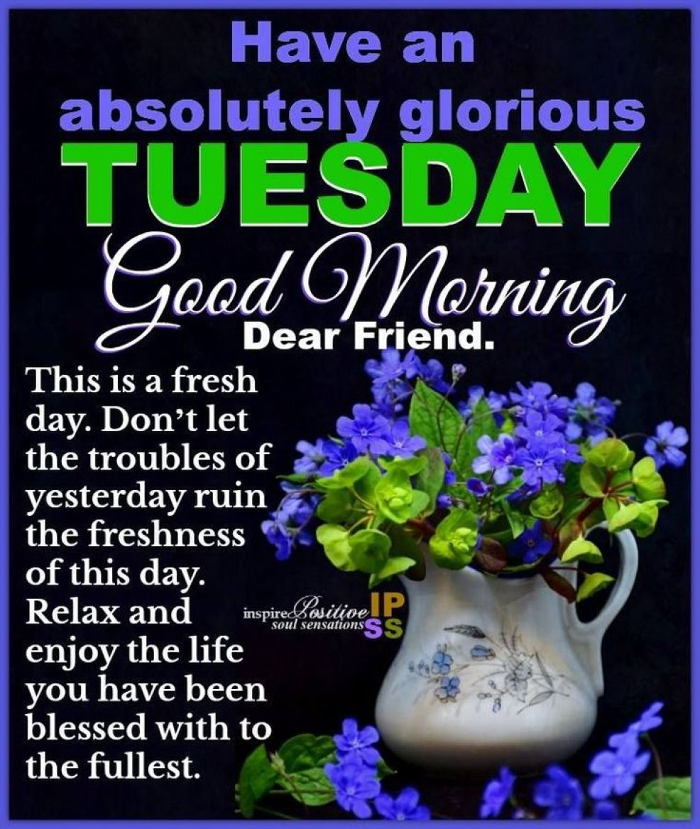 25 Good Morning Tuesday Pictures