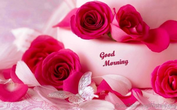 92 good morning wishes