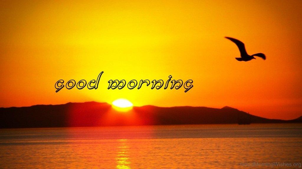 Wake Love Quotes