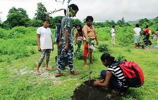 Domulot family farming