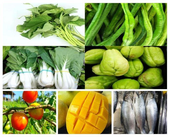 Homegrown Organics farmers