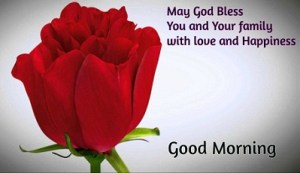 rose image with good morning