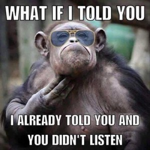 monkey funny style pic