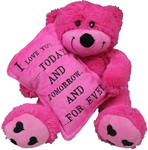 Love Quotes With Teddy Bear Images: 65+ Cute Teddy Bear Pics, Photos Images