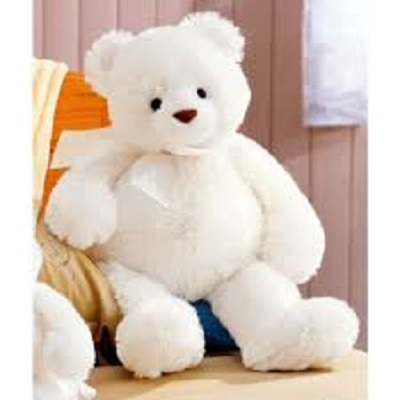 white teddy bear images