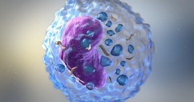 3D image of Lymphocyte