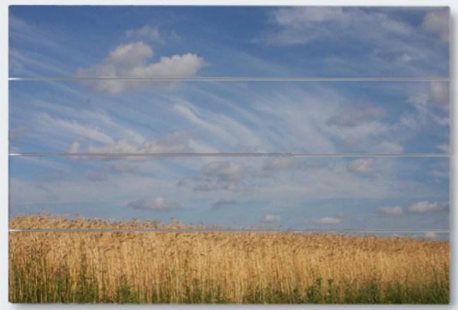 Wisconsin sky wood panel print