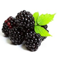 Blackberries Nutrition