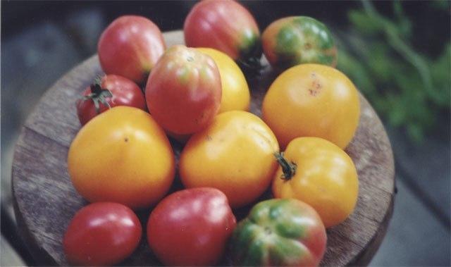 Country Meadows Organics