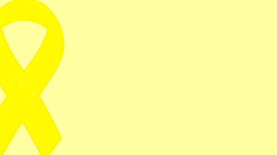 connecticut yellow ribbon schools