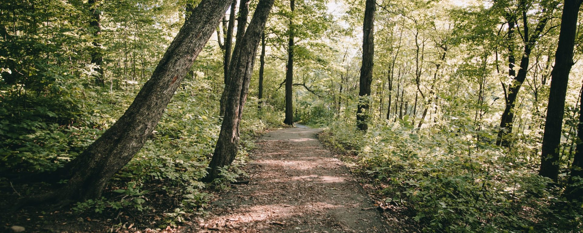 connecticut walking trails for disabled adults