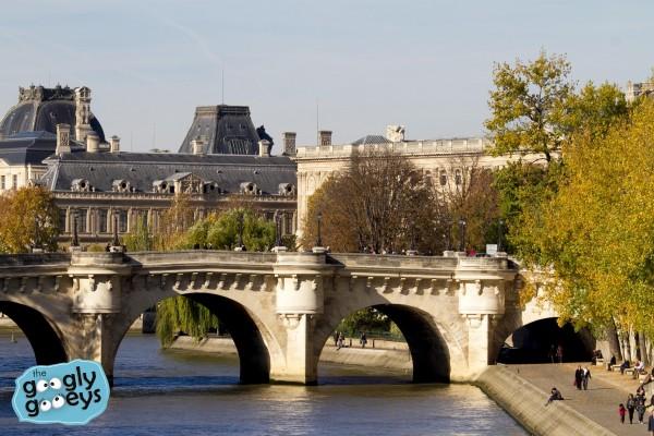 River Seine Paris Fall 2014