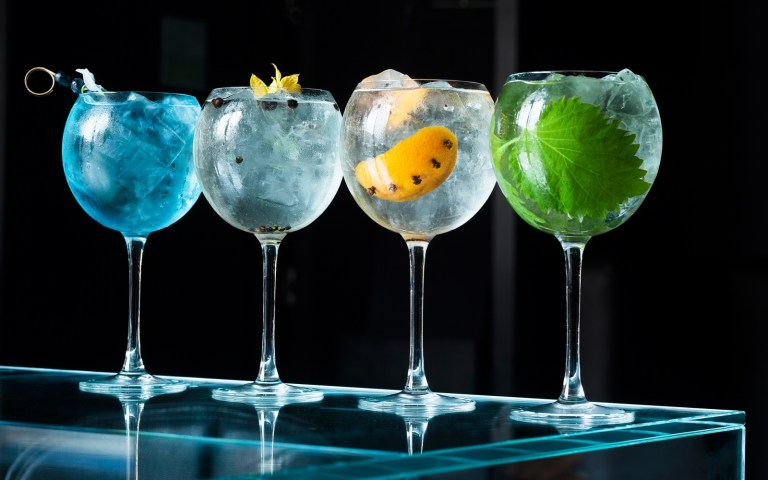 Gin-And-Tonic-themafeest