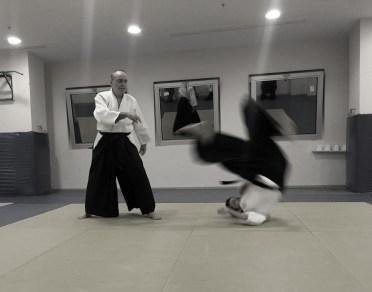 Aikido Eğitmenimiz Cevdet Çiner