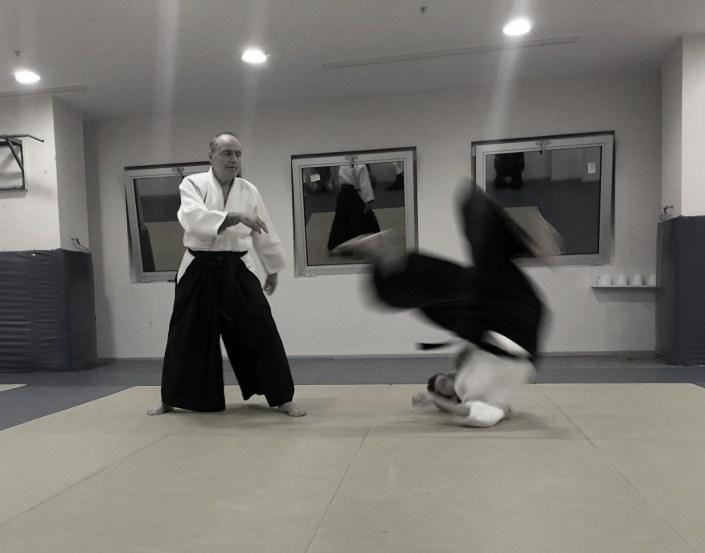 aikido kursu göztepe, aikido dersi, aikido göztepe, aikido esatpaşa.