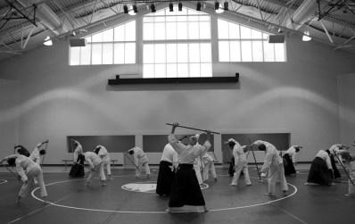 Geleneksel ve Modern Aikido Stilleri