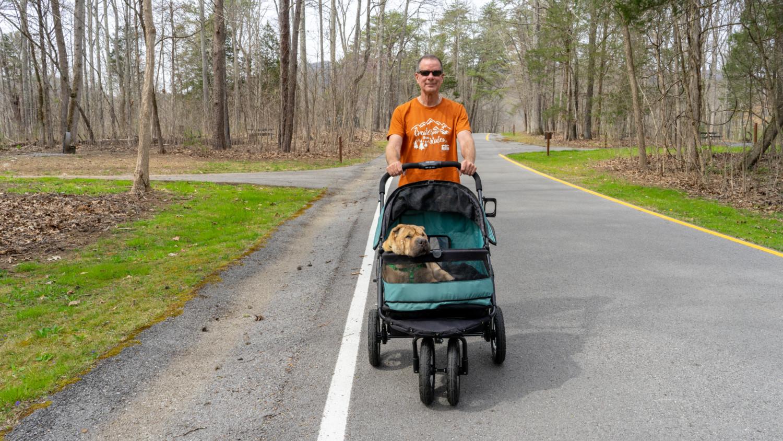 best dog stroller for medium sized dogs