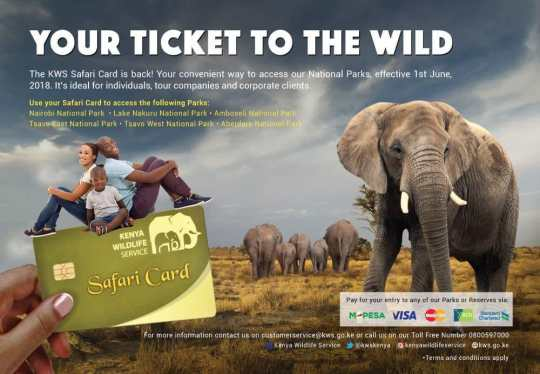 Kenya Wildlife Service Safari Card