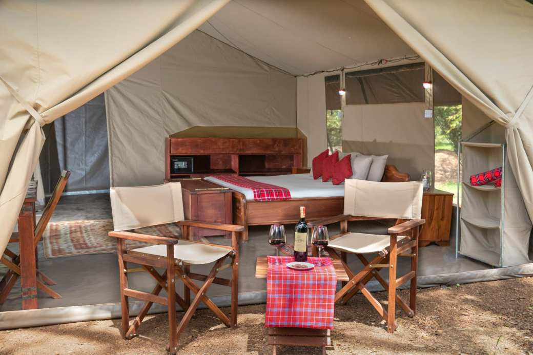 Hammerkop Migration Camp