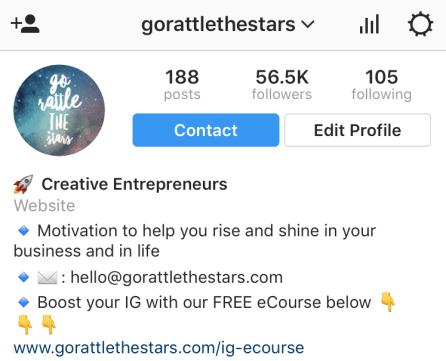 Instagram bio information