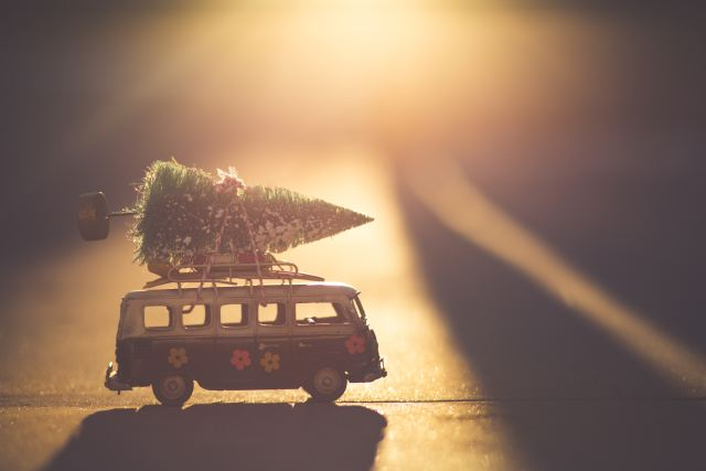 bus with tree on top