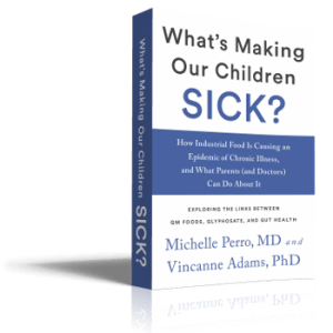 What's Making Our Children Sick? by Michelle Perro and Vincanne Adams