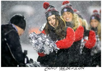 greycup1050244