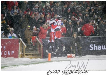 greycup1050829