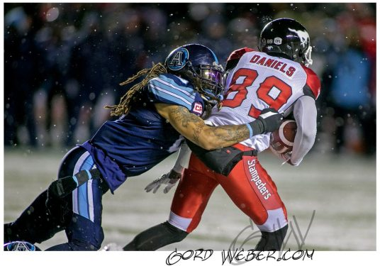 greycup1052229