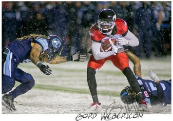 greycup1052511