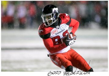 greycup1052528