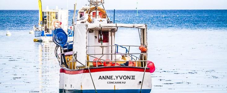 Anne -Yvon II