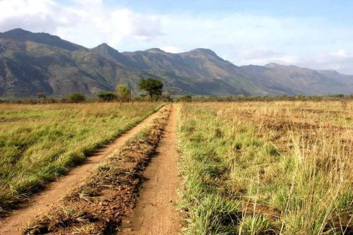 Off The beaten Path Safaris