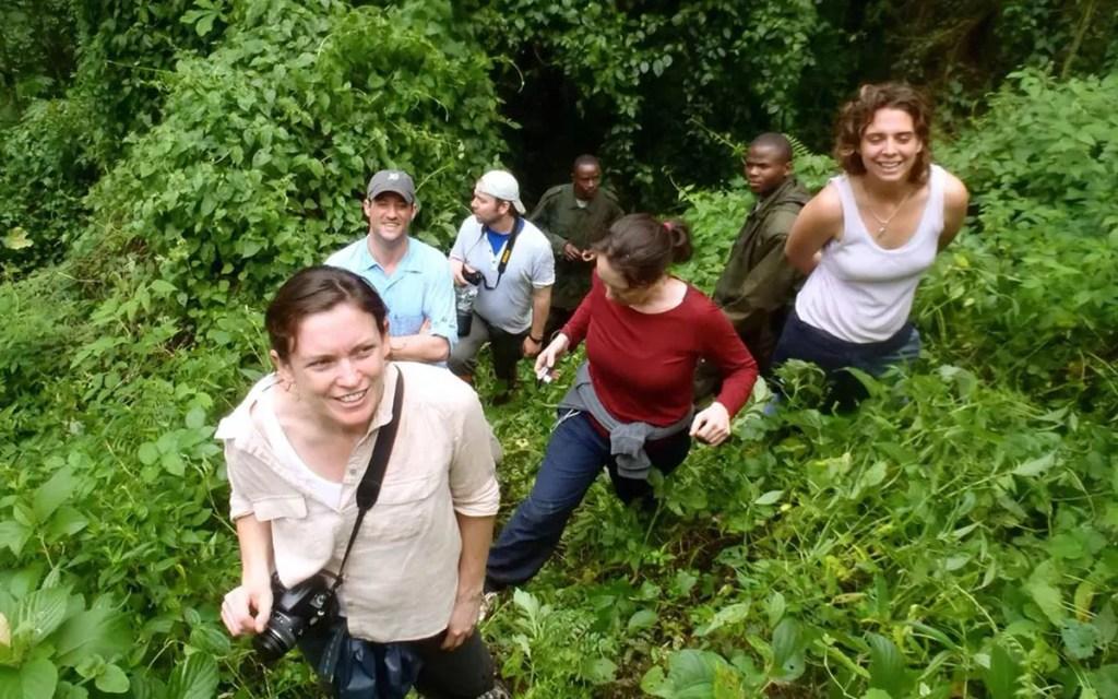Mountain Gorilla Habituation Experience