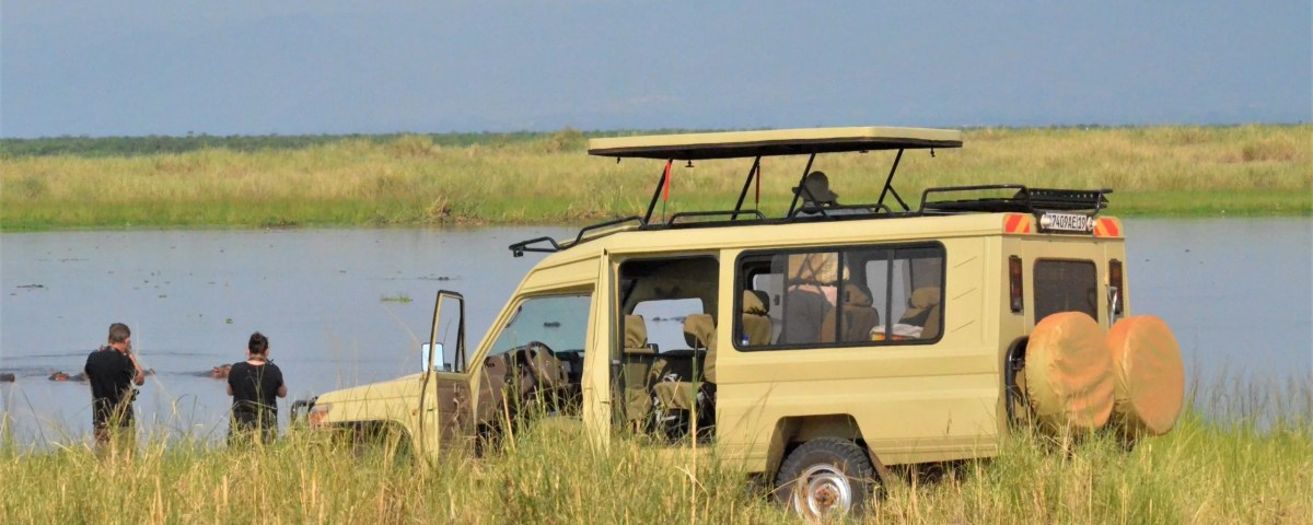 How Much Does A Safari in Africa Cost?