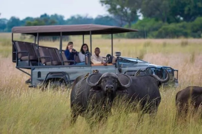 African Safari tours, Trips, Vacation & Holidays