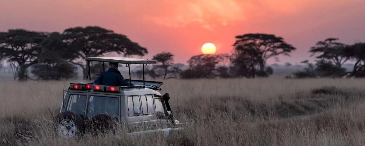 Top Best Africa Safari Destinations