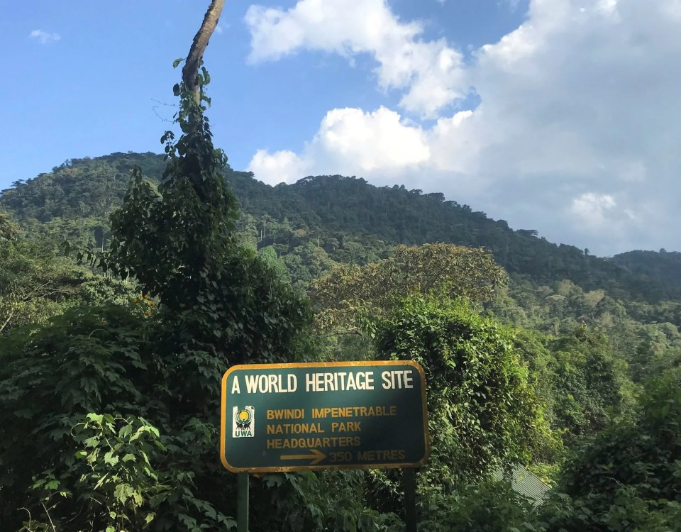 What is the meaning of Bwindi?