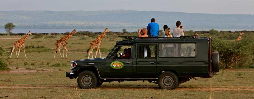 12-day inclusive Uganda gorilla trek, primate wildlife safari. Best Uganda safari to all wildlife parks, select cultural experiences. Enjoy the Uganda tour.