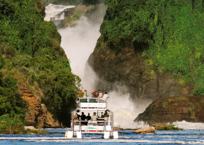 Murchison Falls - Uganda Habituation Tours gorilla habituation, chimps habituation golden monkeys primate habituation tour