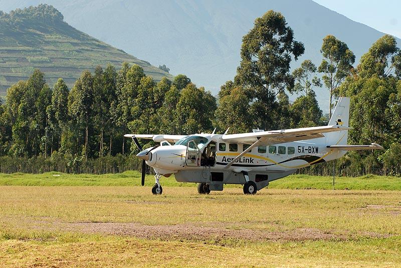Fly in Uganda Gorilla Trek Wildlife Safari and Chimps - 7 Days gorillas and wildlife safaris
