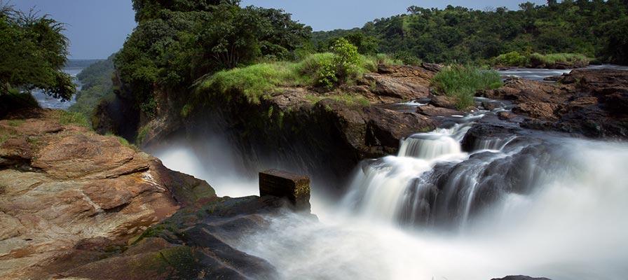Incredible Uganda Wildlife Scenes Safari