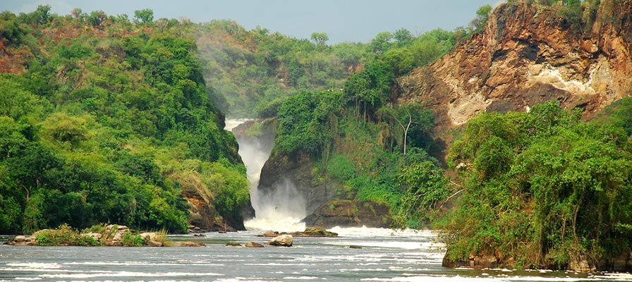 Murchison Falls National Park Safari