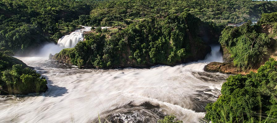 murchison Falls Savannah Safari in Uganda