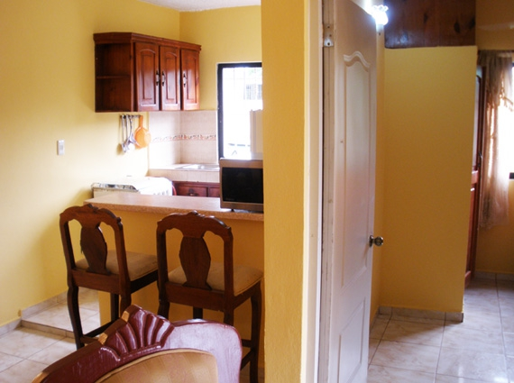 Apartamentos en Samana  Alquiler Apartamento Alta Vista Se Renta Apartamento Amueblado de 2 Dormitorios con Piscina Aire Acondicionado Vista