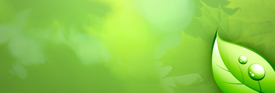 Green Leaf Website Banner