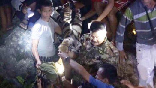 Harimau yang Ditembak Bius di Padang, Ternyata Jinak pada Manusia
